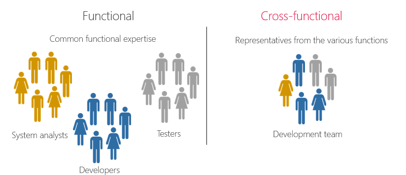 functional vs cross-functional teams