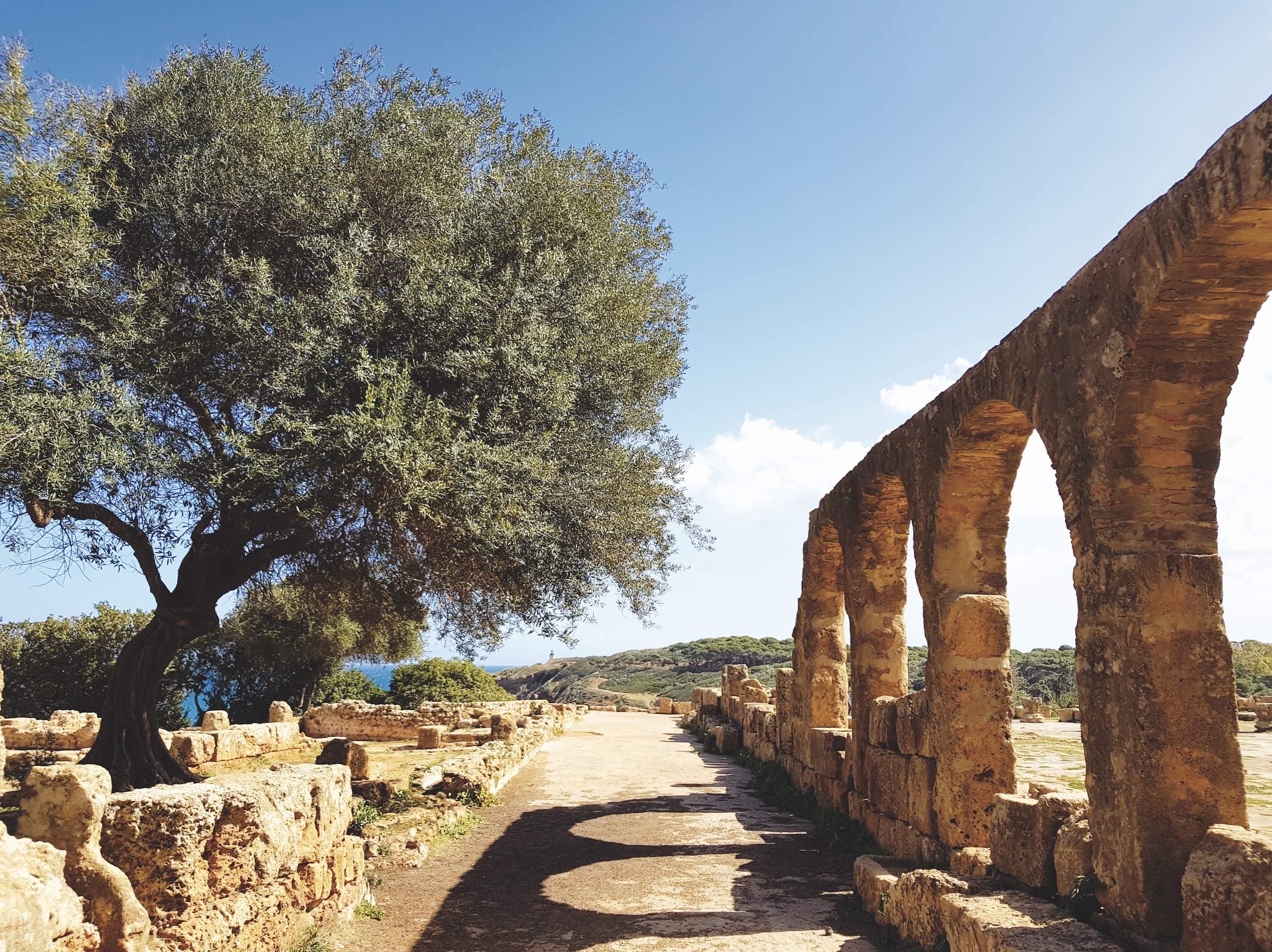 Tipaza, Algérie