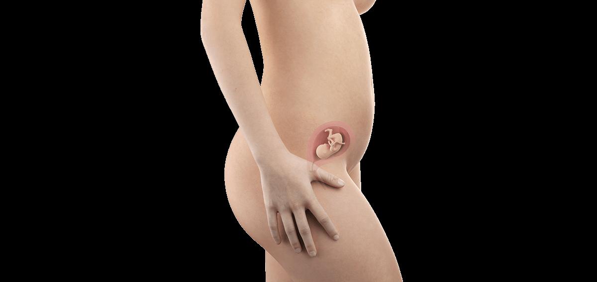 Schwangerschaftswoche 16