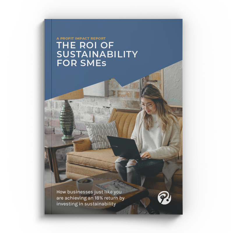 ROI of sustainability report cover image