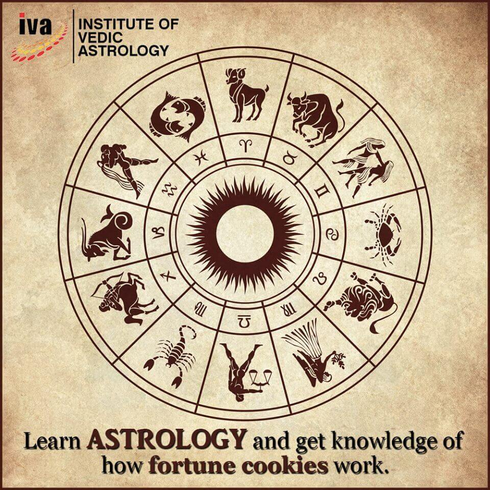 Institute of Vedic Astrology Reviews the Power of Zodiac Signs