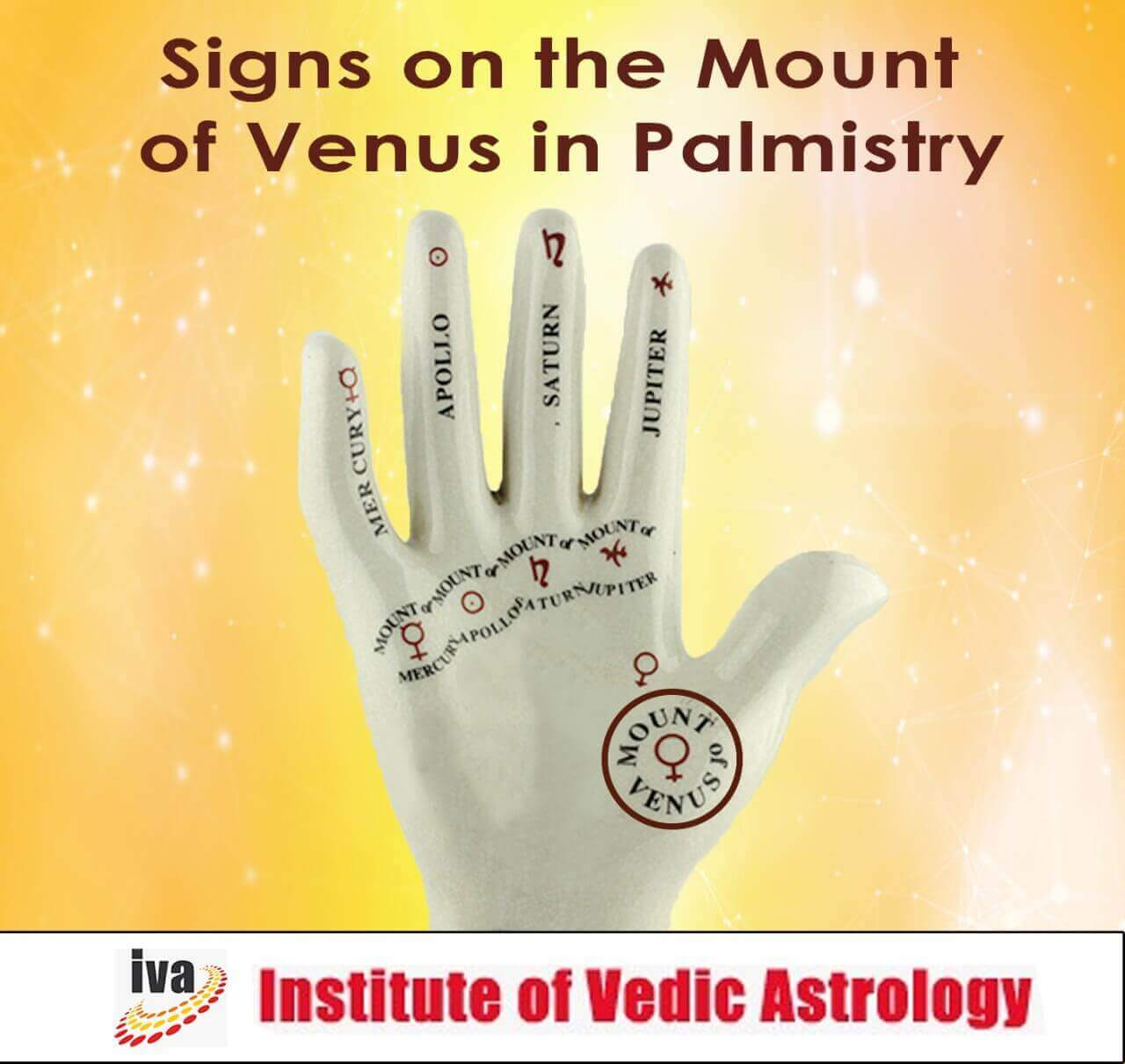 Signs on mount of Venus palmistry
