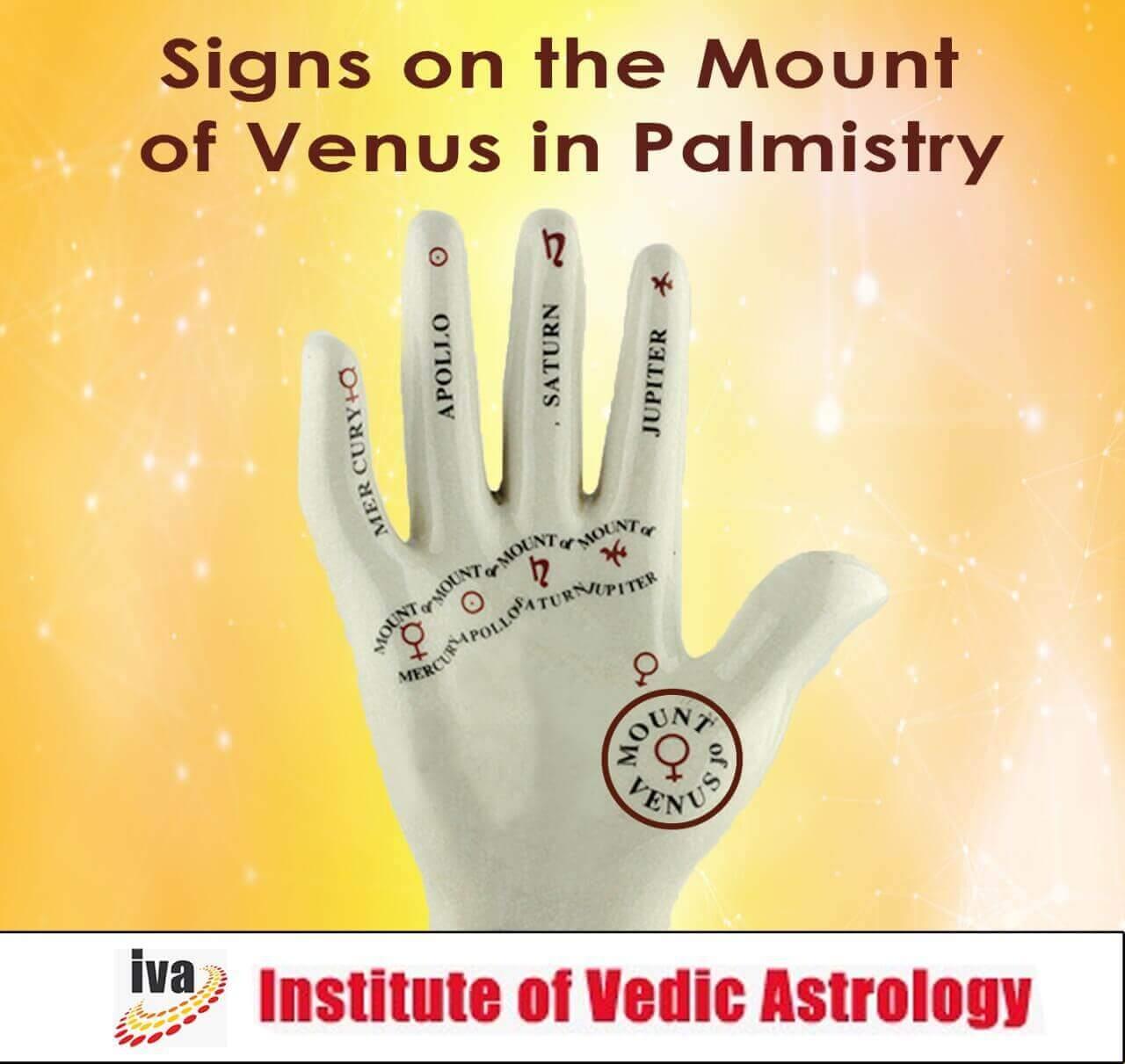 Signs on mount of Venus palmistry