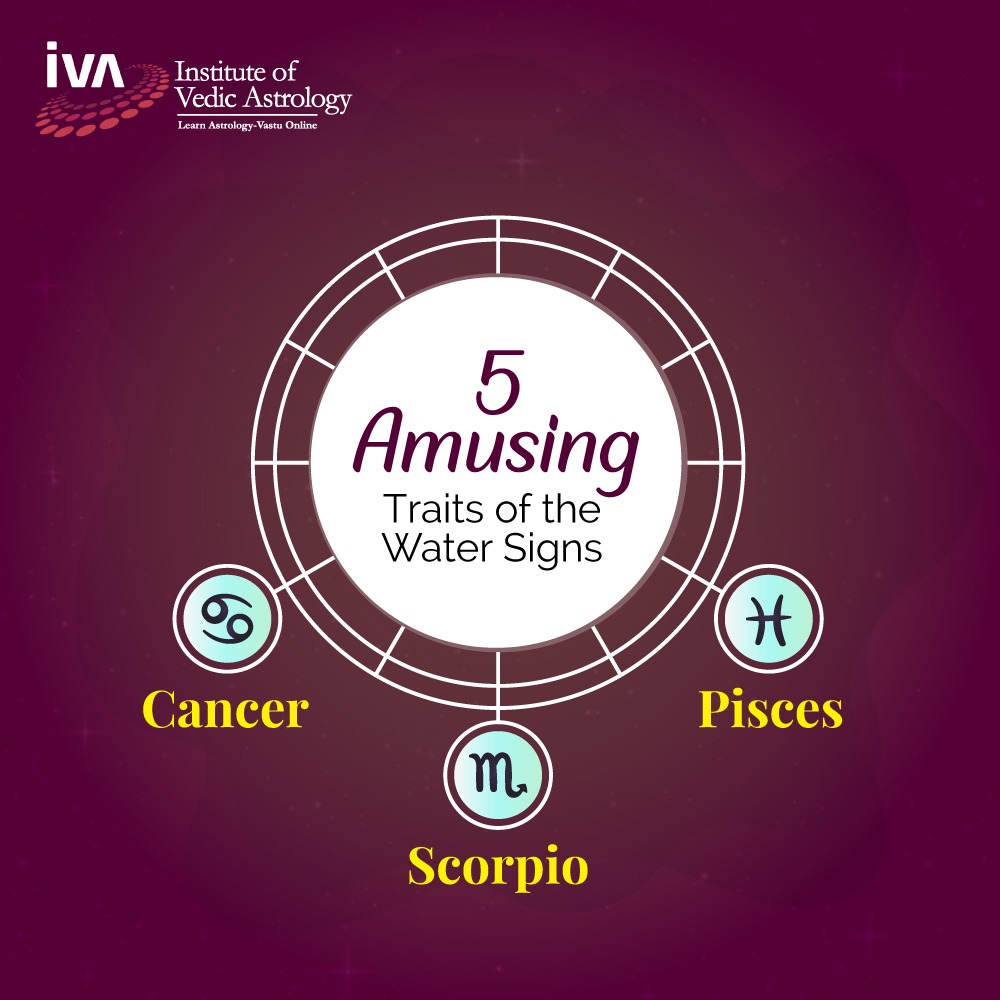 5 Amusing Traits of the Water Signs - Cancer, Scorpio & Pisces