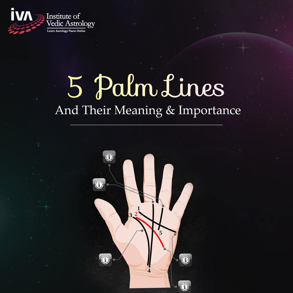 5 Palm Lines and Their Meaning and Importance