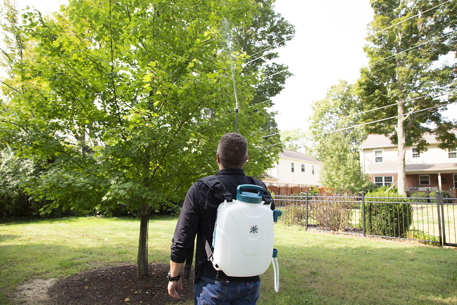 Man spraying a tree with a SprayMate Storm battery powered backpack sprayer