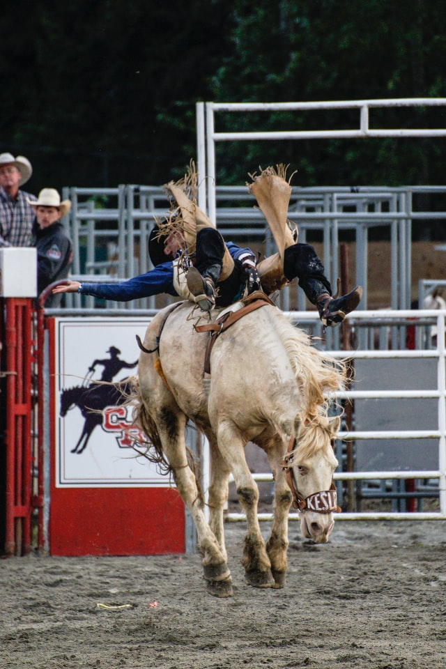 An image of a horse bucking its rider in a rodeo