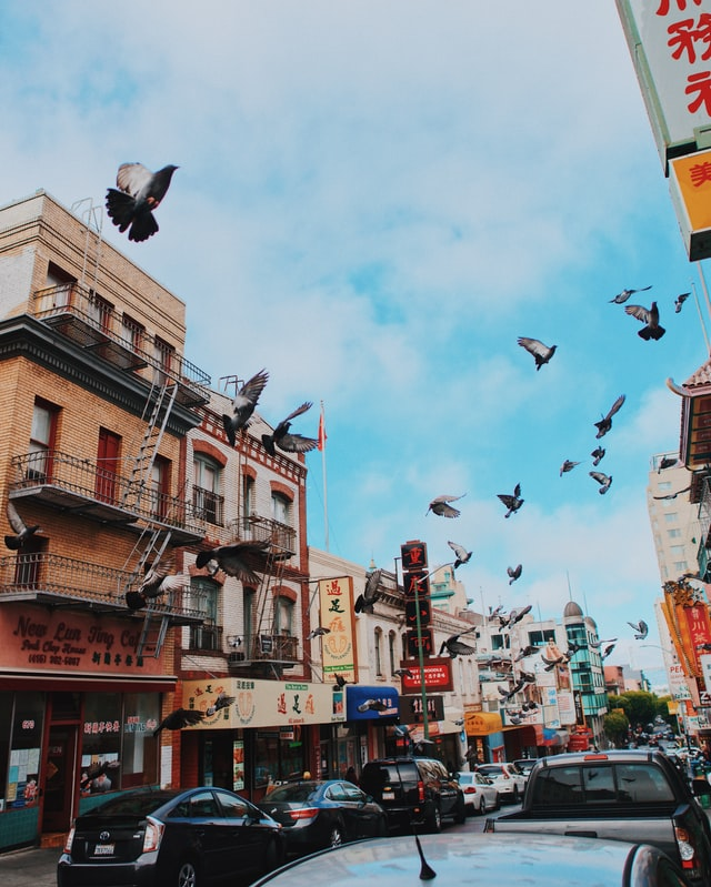 An image of pigeons flying in a quaint street