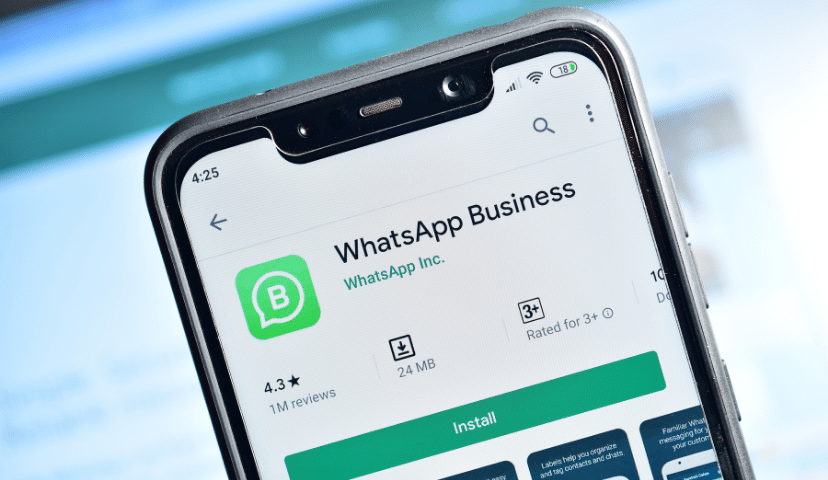 types of whatsapp business accounts