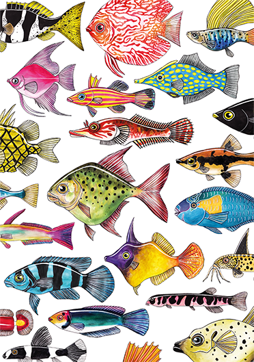 Fish on Friday Poster