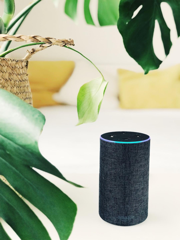 Bambú ha trabajado con Amazon Alexa para ofrecer sesiones de meditación y mindfulness en castellano