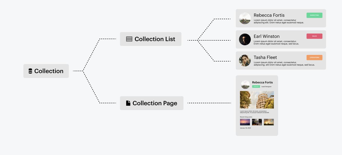 utiliser Webflow pour créer un prototype en no code