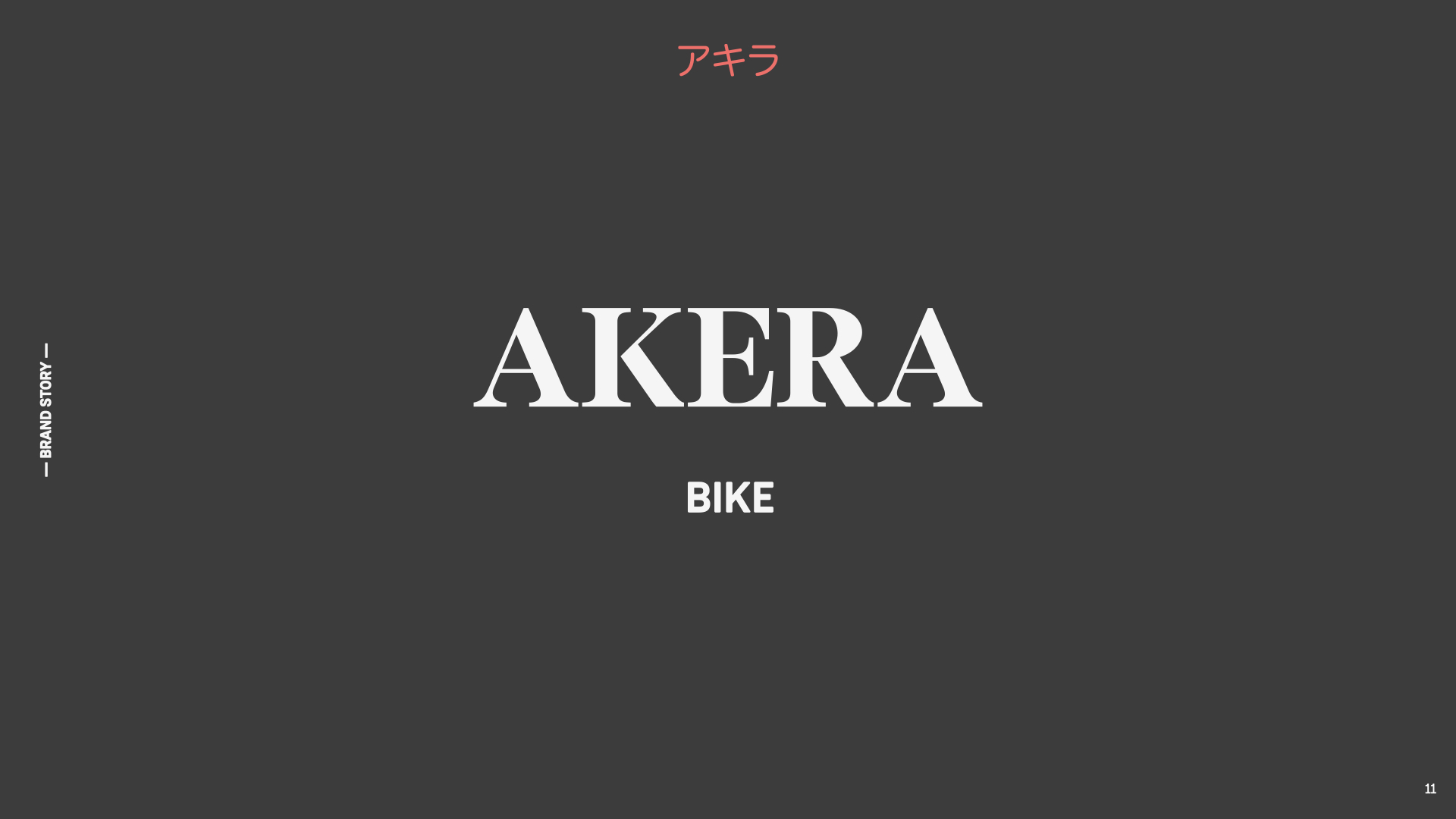 AKERA-NAME-BRANDING-ICONOMIC-NETWORK
