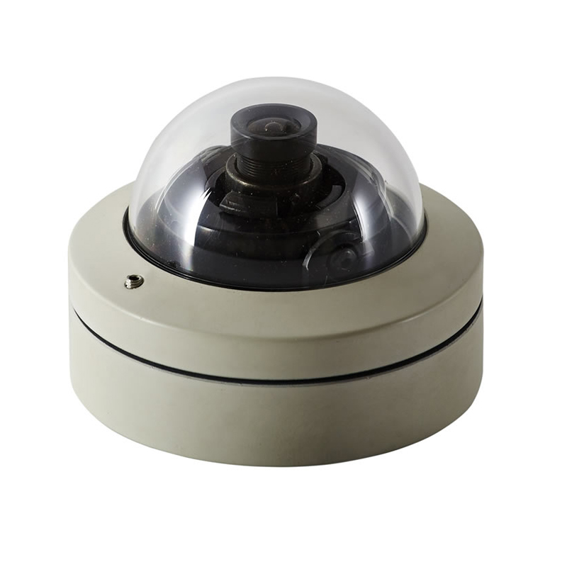 Micron is one of the world's smallest vandal-resistant dome cameras.