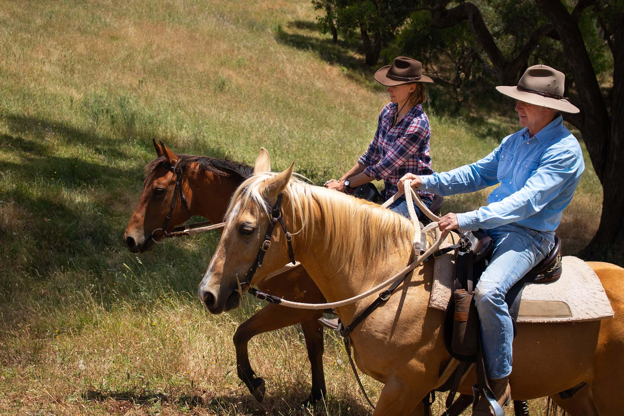 Riding horses at elevation652.