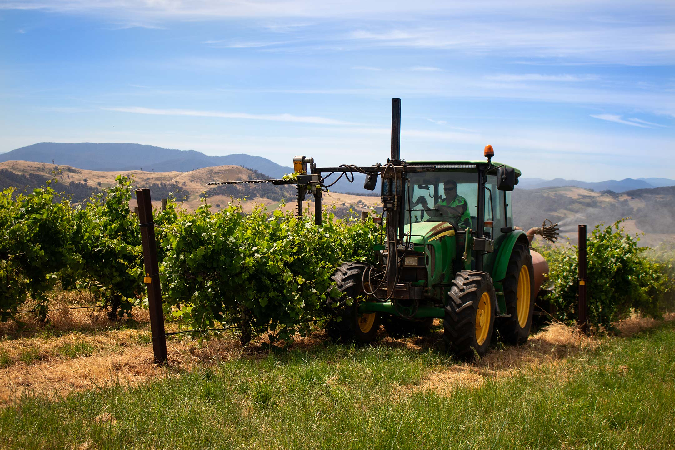 Tractor driving through the vineyards at elevation652.