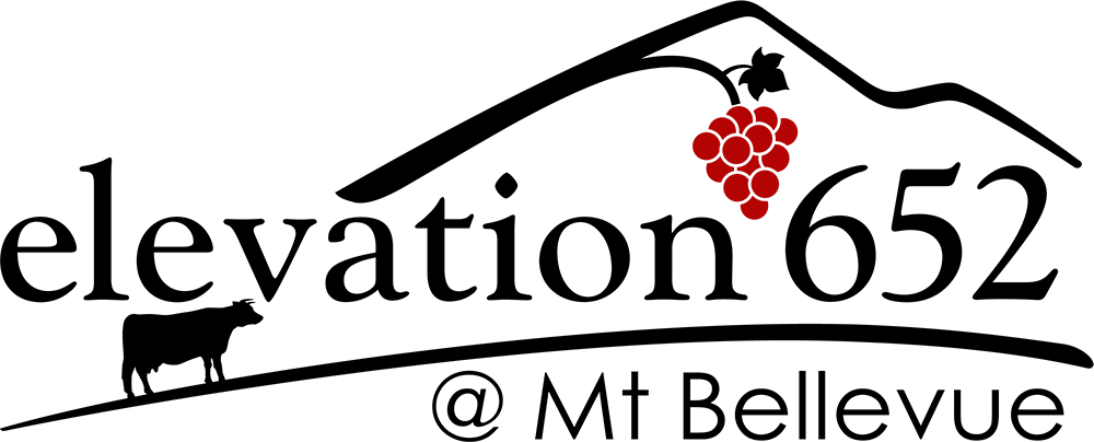 elevation652 logo.
