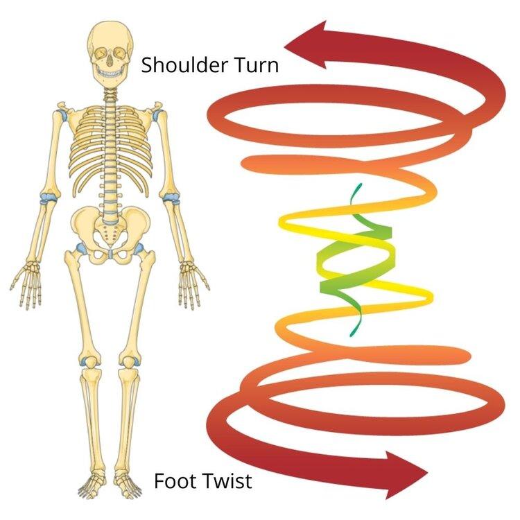 Ballroom Dance Mechanics- Shoulder Turn and Foot Twist