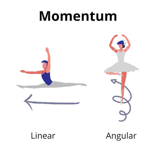 Representation of Linear and Angular Momentum in Dance