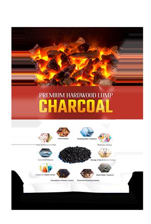 kaypee display charcoal bag