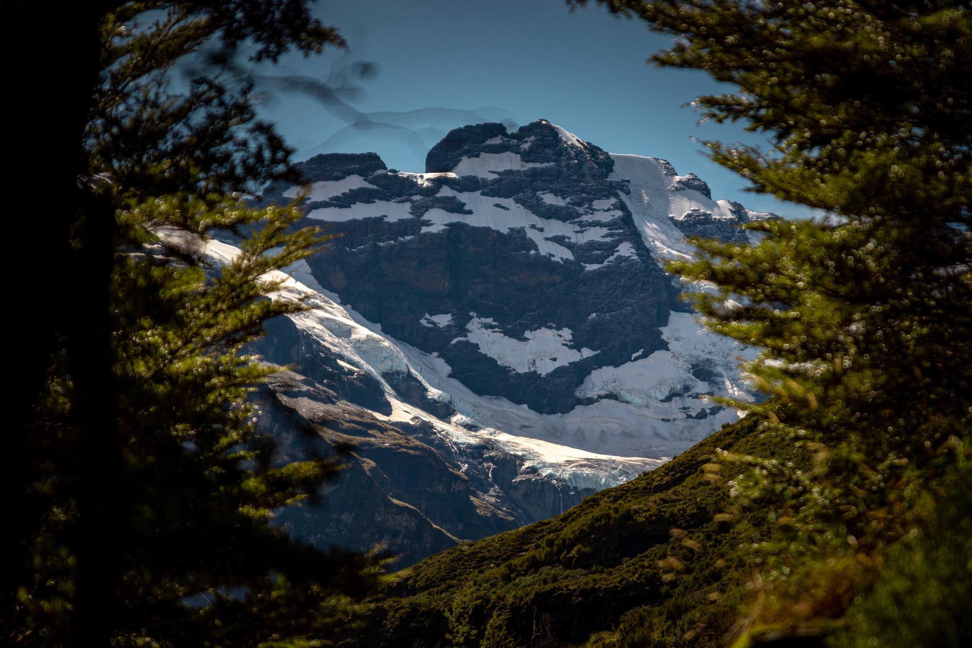 Mount earnslaw through trees