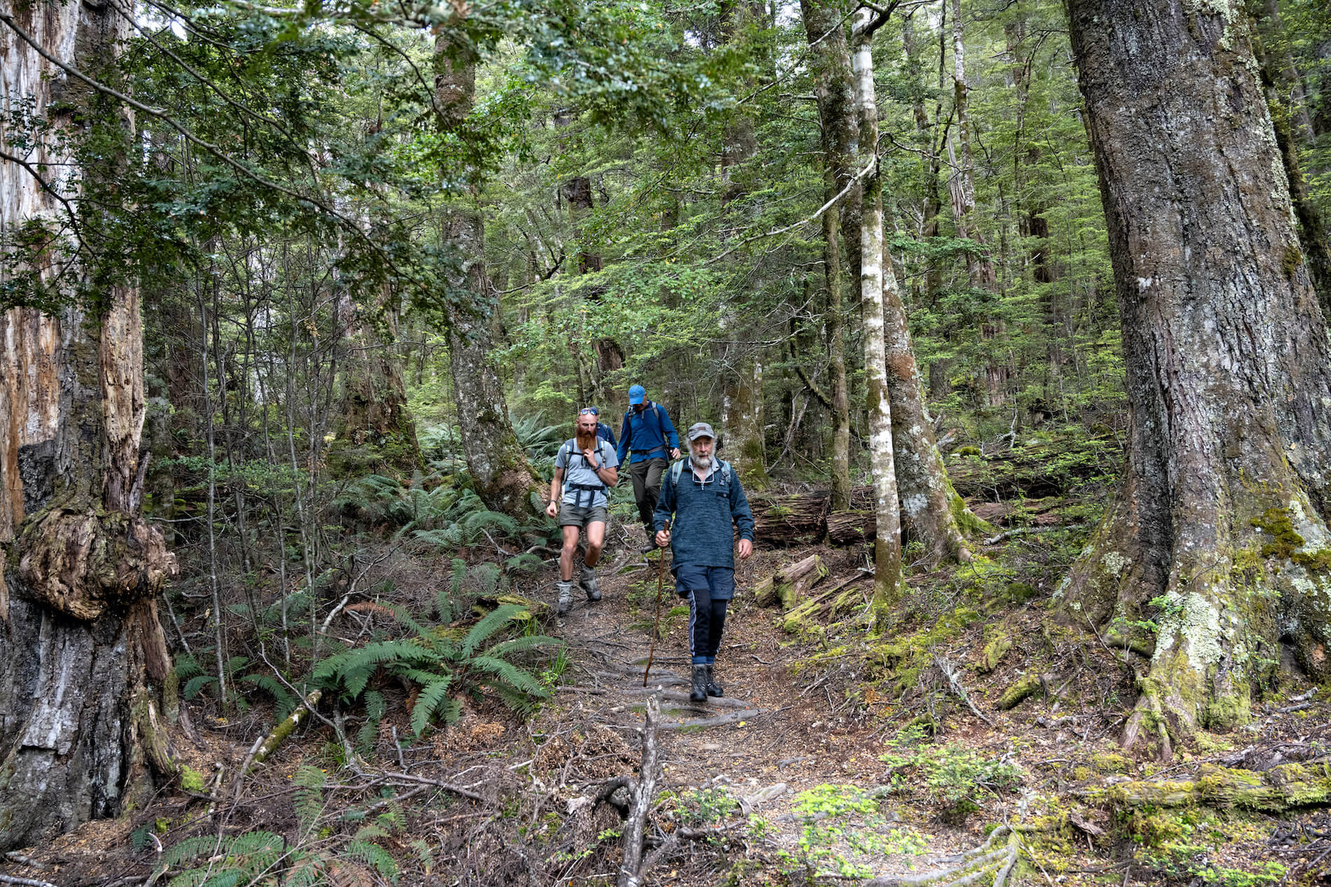 Earnslaw Burn Hike in Glenorchy New Zealand