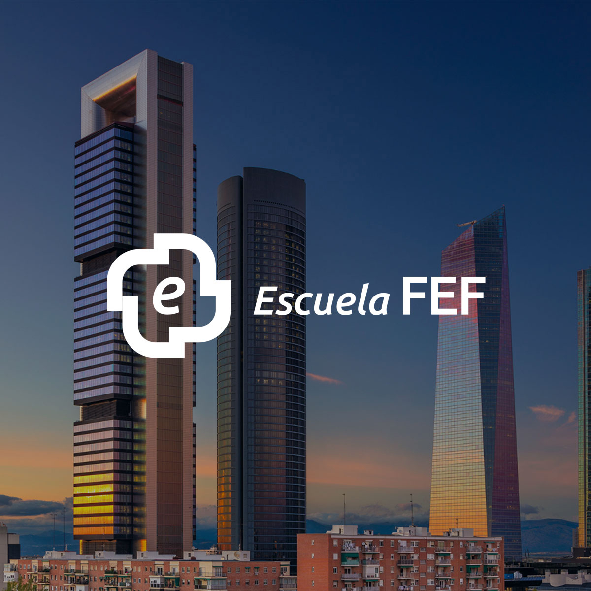Escuela FEF: E-commerce & 360º Strategy