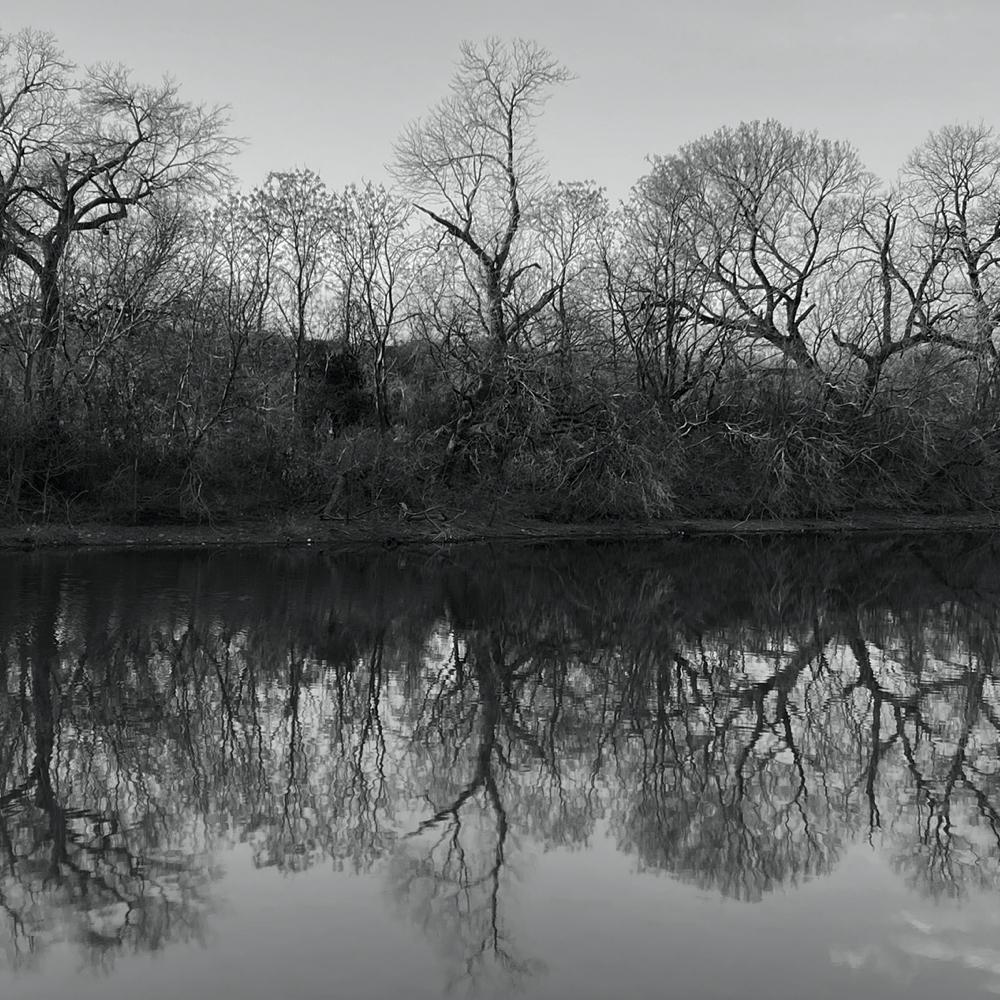 stillness.