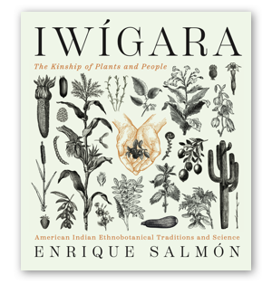 Cover image of Iwigara