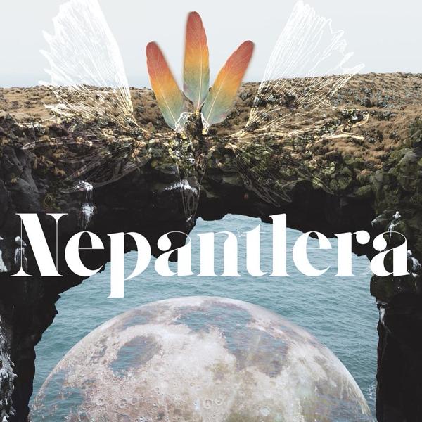 Nepantlera—Becoming Verb: Shapeshifting in the Modern World