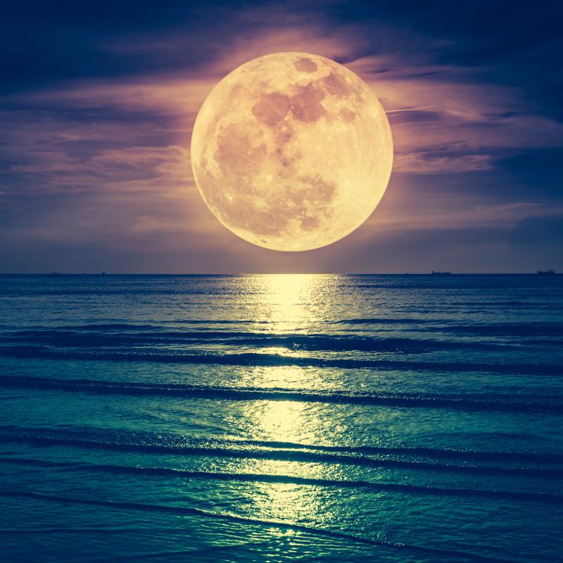 Harnessing Moonlight