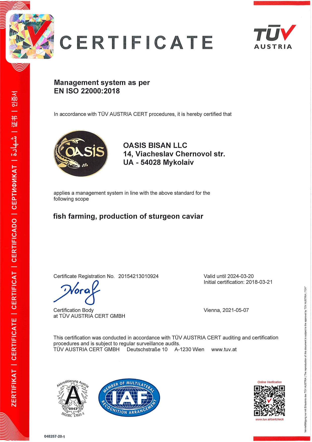 ISO certificate in English