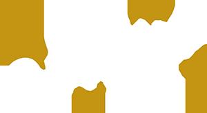 Artisan Website Company logo