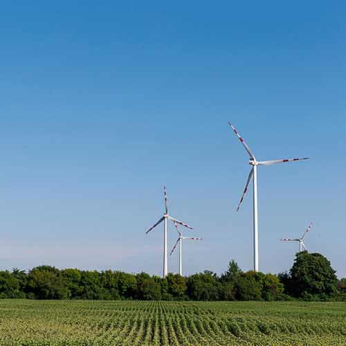 Unser Ansatz bei Wien Energie