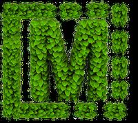 Mediaclub Green