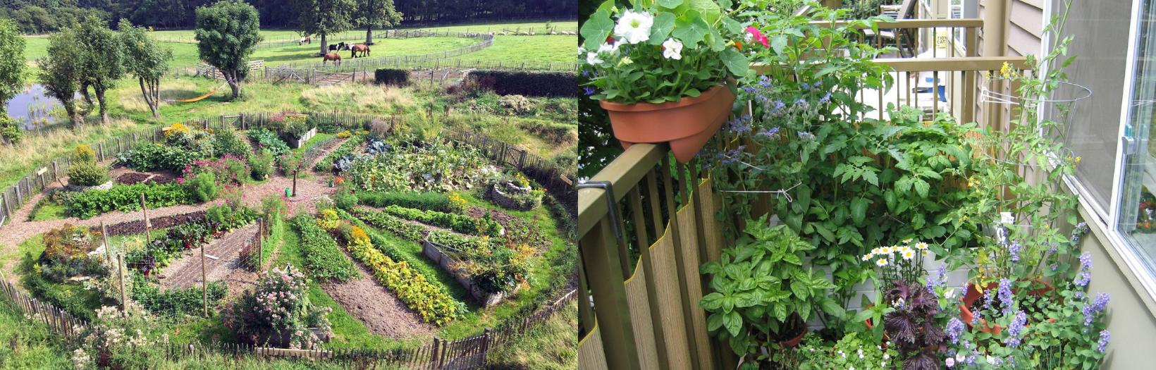 Tout savoir (ou presque) sur la permaculture