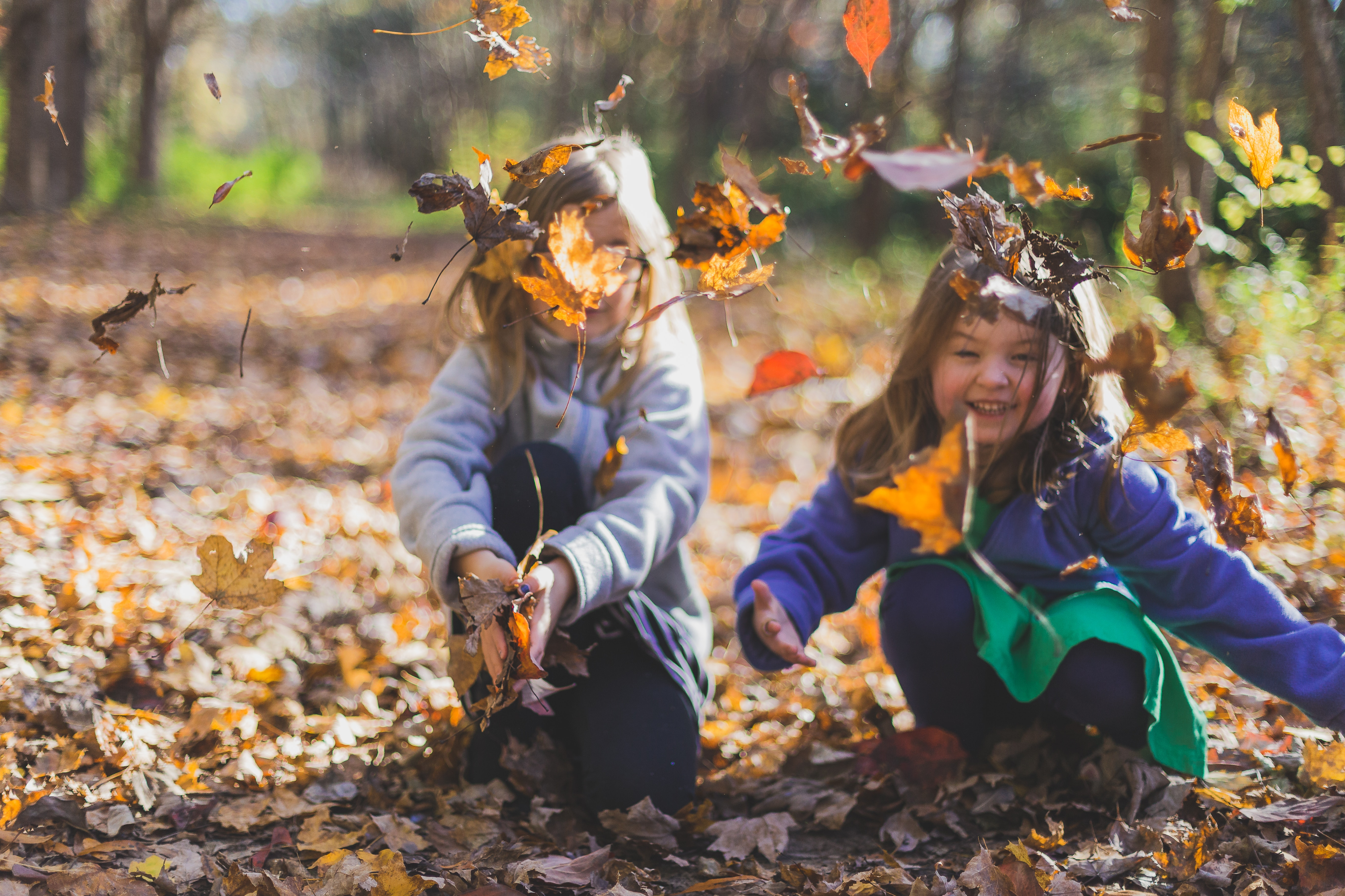 little girls playing with leaves in the fall
