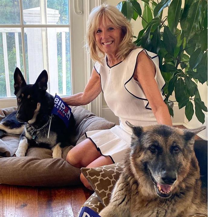 Jill Biden With Dogs