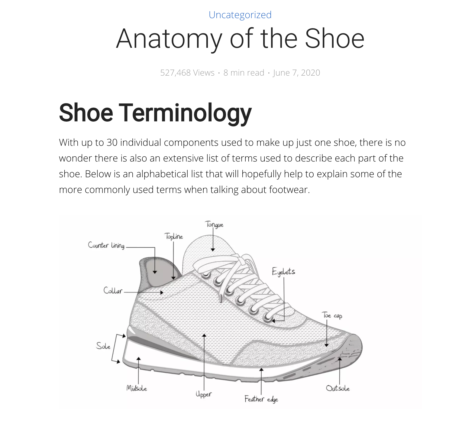 Anatomy of A Shoe Article