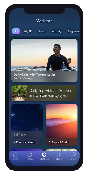 Calm Current Meditate Section
