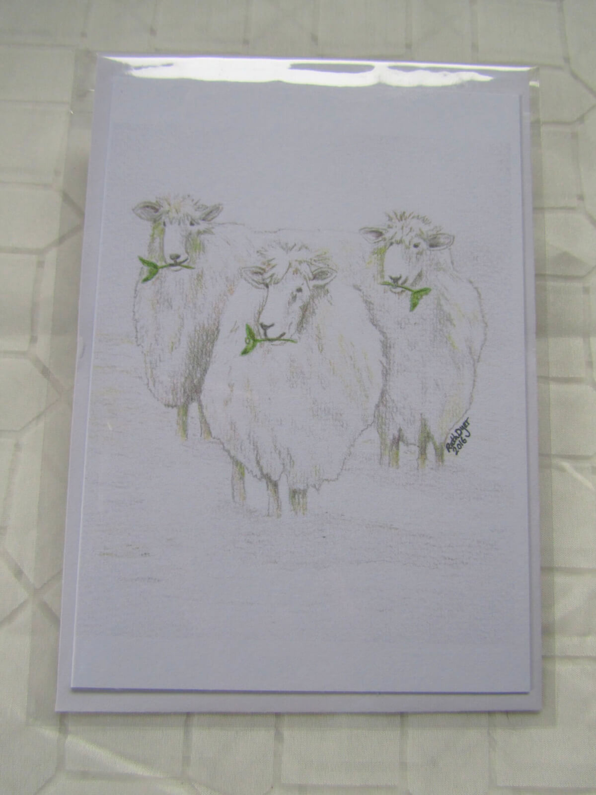 Festive Sheep!