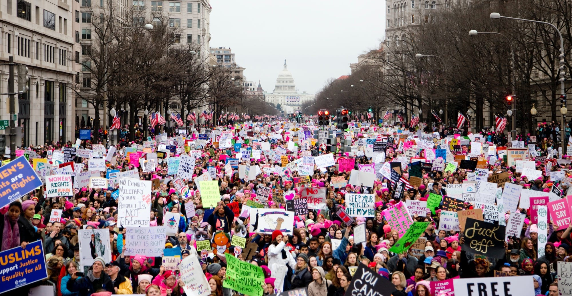 Hundreds of demonstrators holding signs at the women's march in Washington D.C.