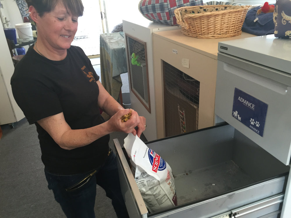 Woman getting cat food out of a cupboard