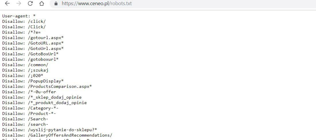 konfiguracja strony robot txt