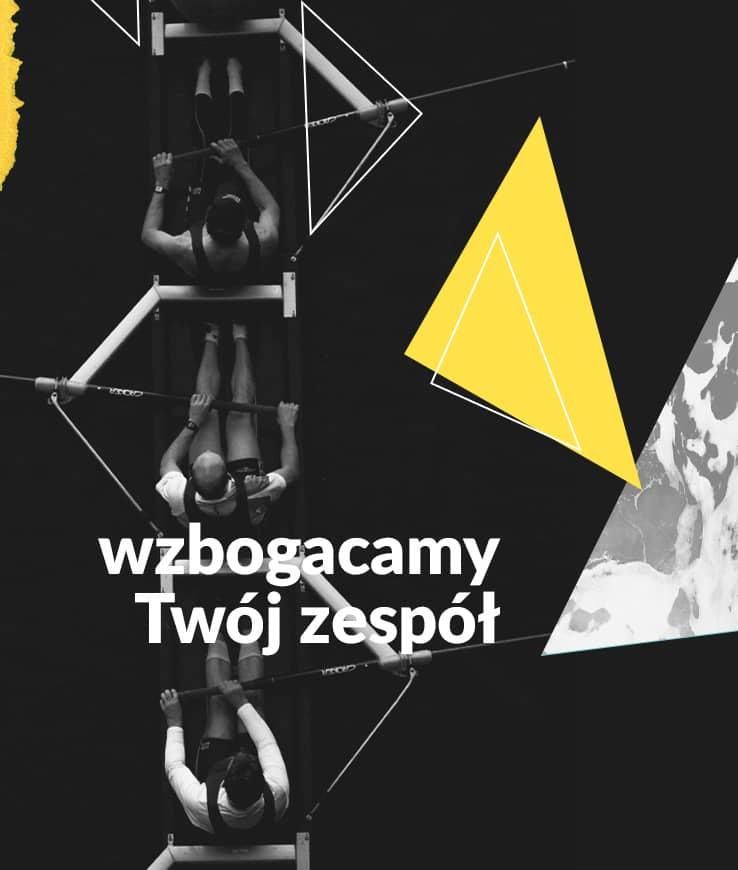 profesjonalne strony internetowe dla Krakowa
