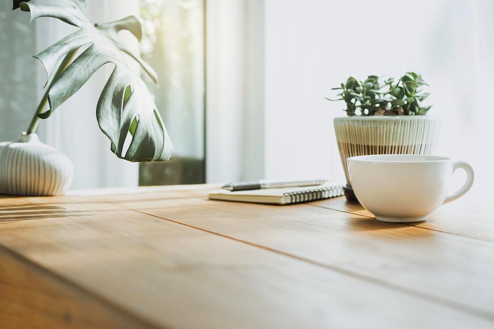 Plants on a desk