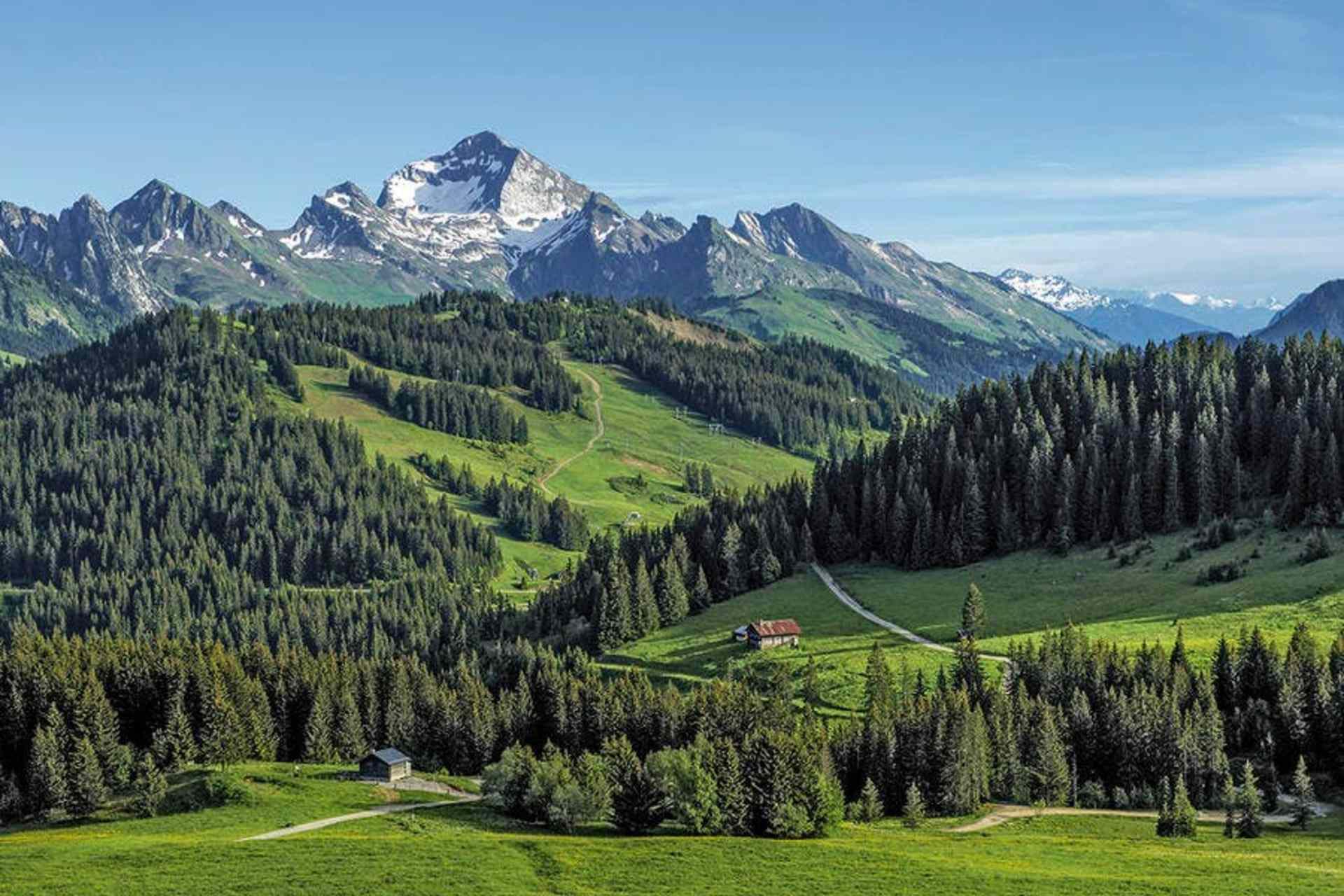 Les Aravis, entre montagne, chamois et reblochon