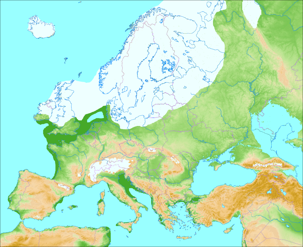 L'Europe pendant la dernière ère glaciaire