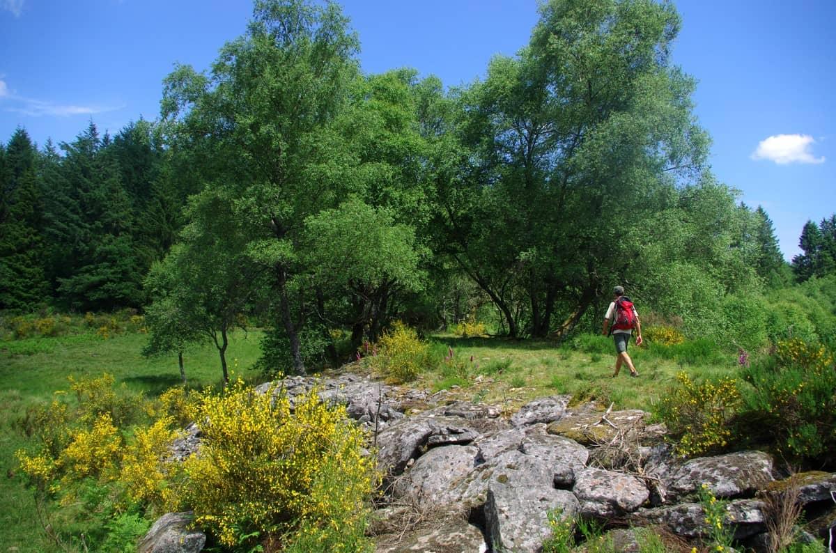 Randonnée dans la nature en Corrèze