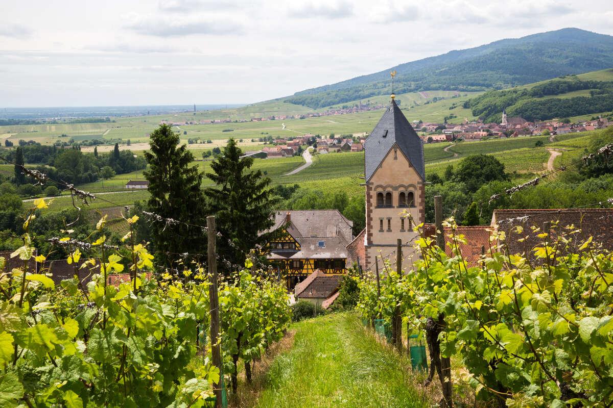 vignobles et villages en alsace
